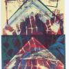 «Органічні структури. Продовження» Володимир Чорнобай. 19 березня – 7 квітня 2013.